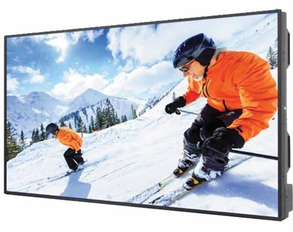 "42"" High Brightness Display DS421LT4"