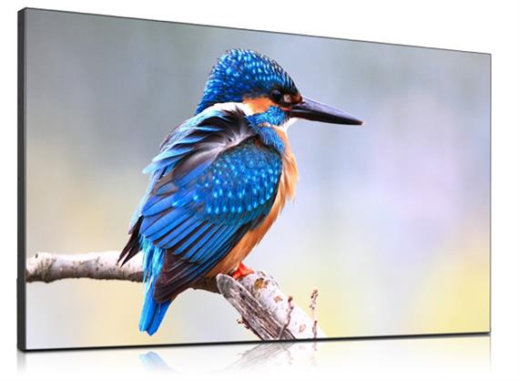 "55"" High Bright Super Narrow Bezel Display DS551LX4"