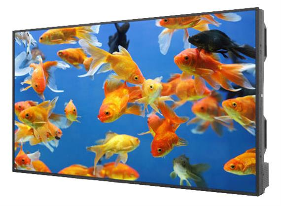 "55"" High Brightness Display DS552LT4-1"