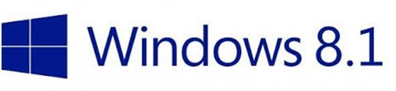 Windows 8.1 Professional Lizenz